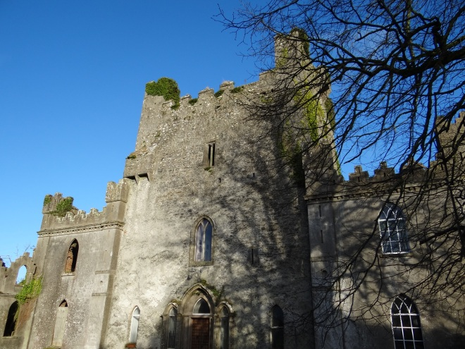 Leap Castle, most haunted castle in ireland, cast oubliette, castle elmental, Vanta M. Black, oubliette, oubliette the book